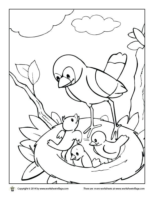 612x792 Bird Nest Coloring Page Free Coloring Pages Of Birds Bird Nest