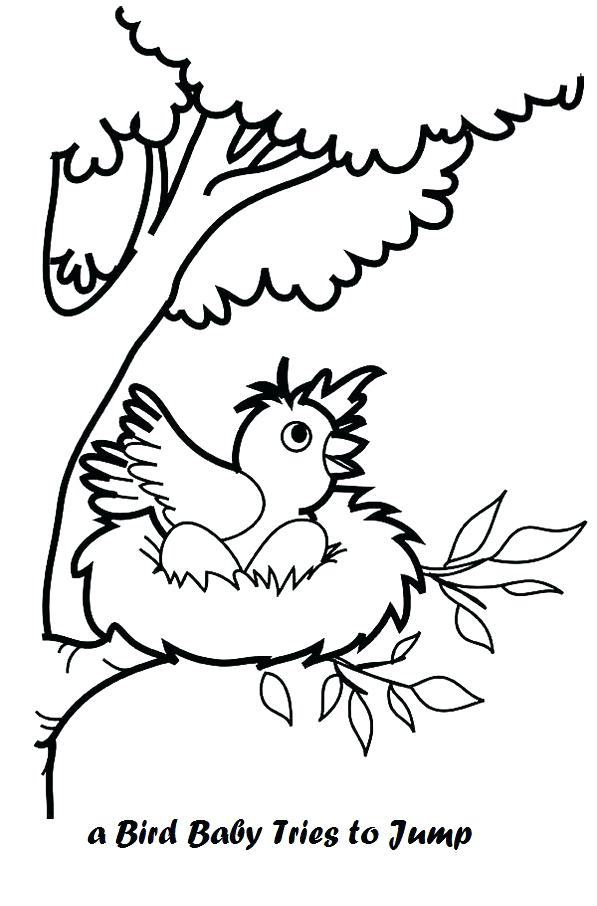 597x906 Bird Nest Coloring Page See Best Images Of Bird Nest Printable