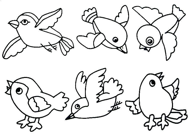 756x538 Bird Projects For Preschoolers Birds Preschool Activities Birds