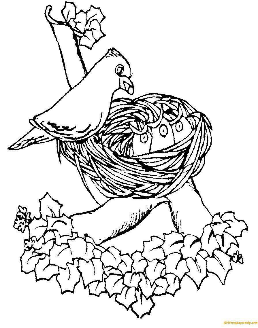 895x1139 Colorful Coloring Pages Birds Nest Motif