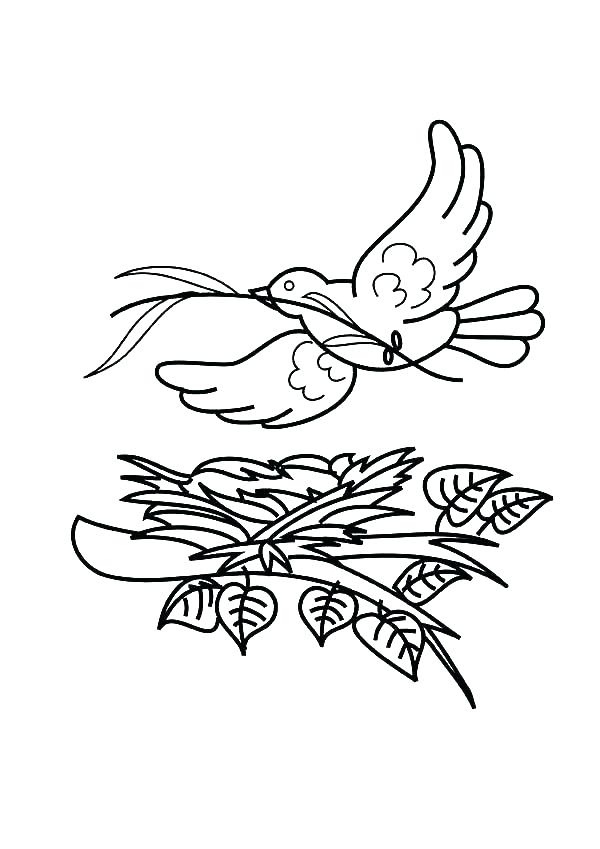 600x849 Free Bird Coloring Pages Bird Nest Coloring Page Flying Bird