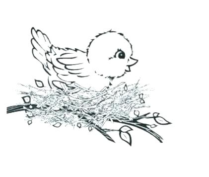421x356 Baby Bird Coloring Page Bird Nest Coloring Page Baby Bird Coloring