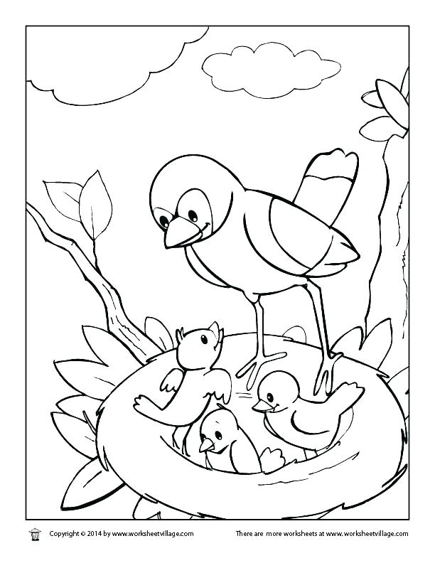 612x792 Free Coloring Pages Birds Rare Bird Coloring Pages Bird Coloring