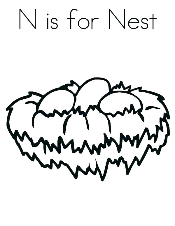 600x776 Toucan Coloring Pages Toucan Coloring Page Bird Nest Coloring Page
