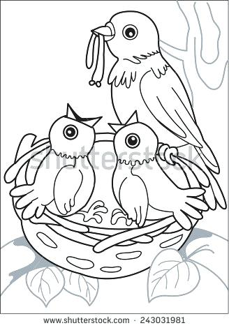 328x470 Coloring Page Of Birds Nest