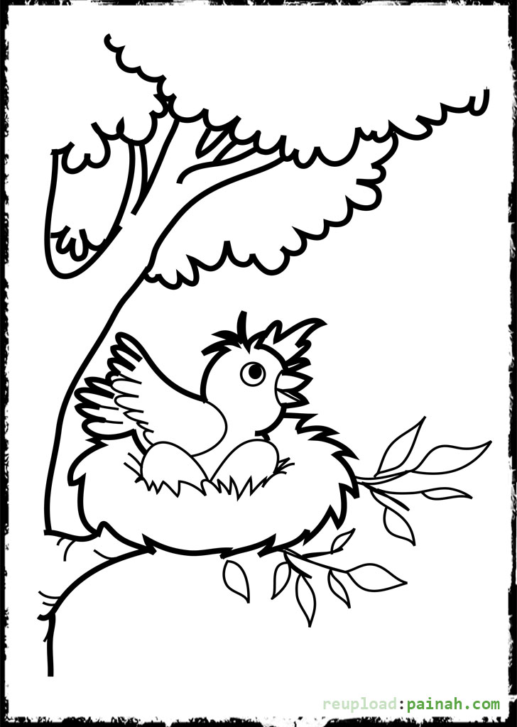 728x1024 Baby Bird Coloring Pages