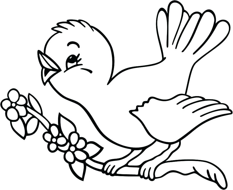960x783 Baby Bird Colouring Pages Baby Bird Open Their Mouth Wide In Bird