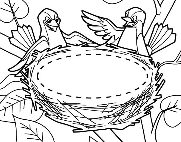600x471 Bird Couple And Their New Bird Nest Coloring Pages Best Place