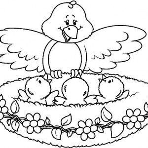 300x300 Bird Family Live In Bird Nest Coloring Pages Best Place To Color