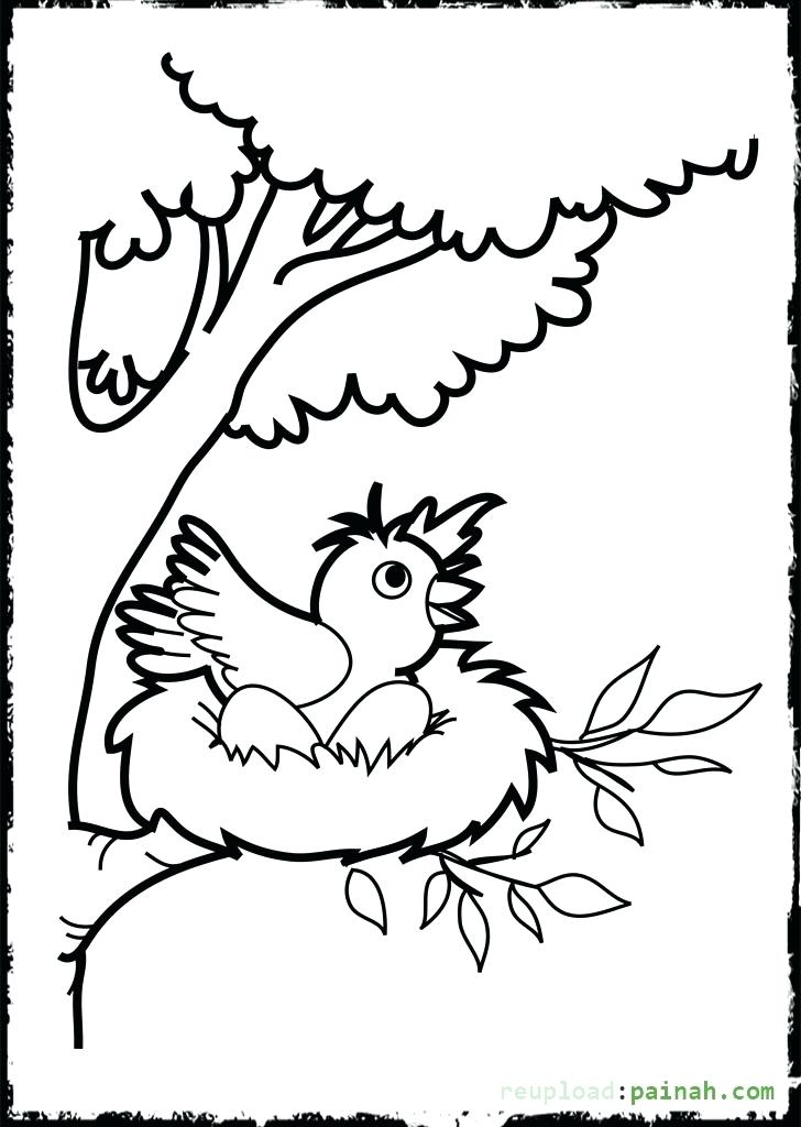 728x1024 Coloring Pages Bird Eagle Coloring Pages Download Birds Bald