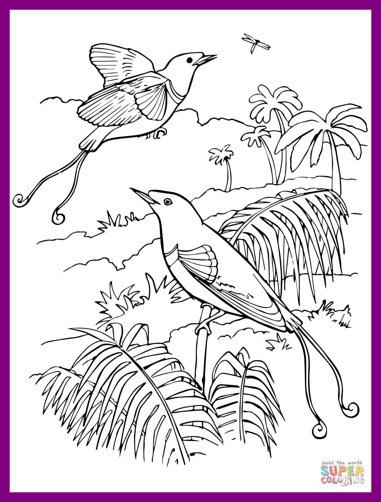 1264x1664 Incredible Coloring Pages Birds And Flowers Wkwedding Co Pics