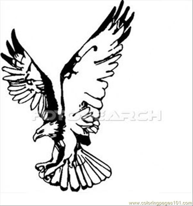 650x693 Eagle Wings Up Coloring Page