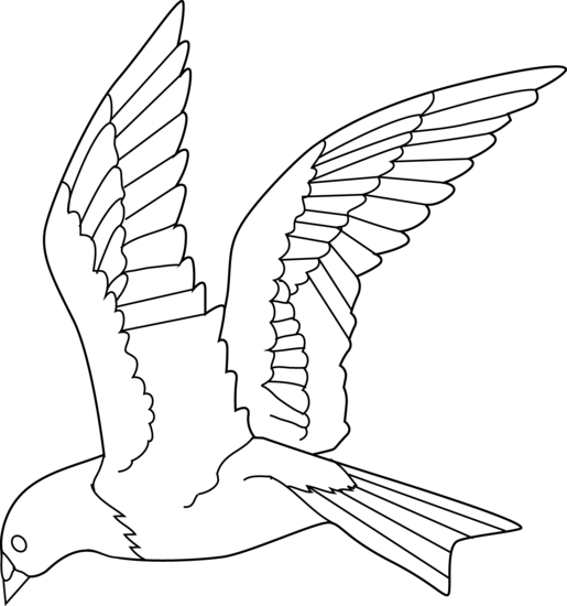 515x550 Flying Bird Coloring Page