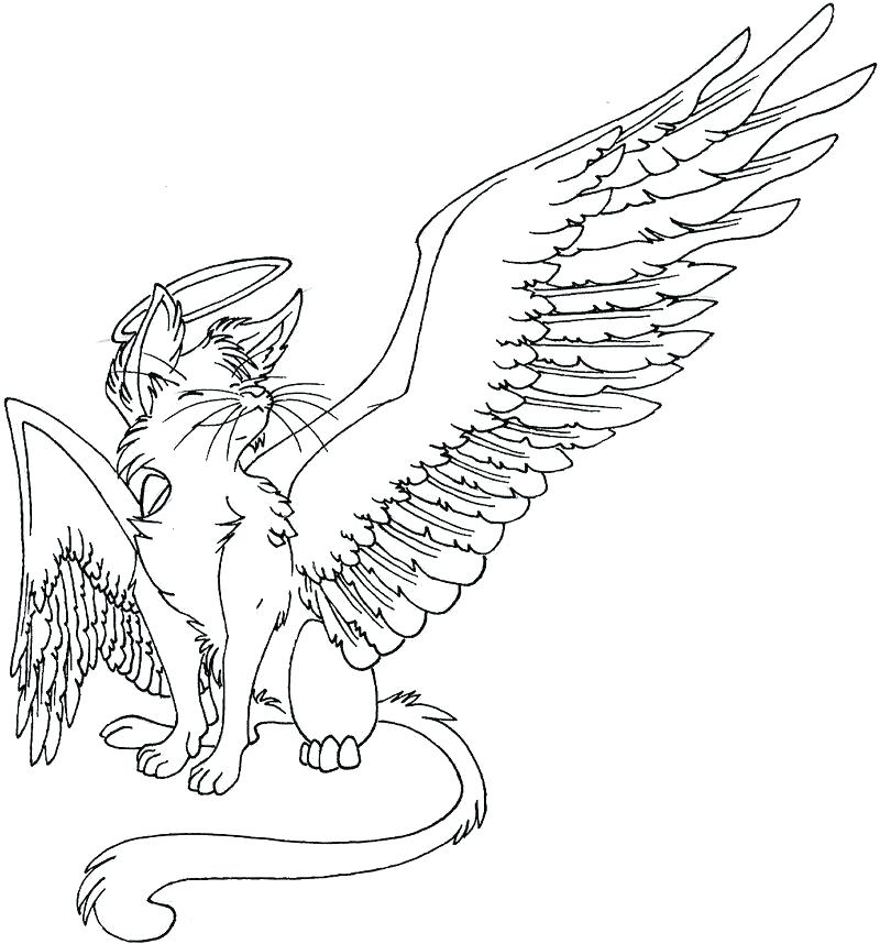 800x858 Cat With Wings Coloring Page Cat Coloring Pages With Wallpapers