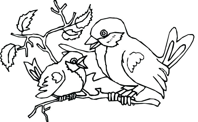 800x494 Birdhouse Coloring Pages For Adults Printable Coloring Coloring