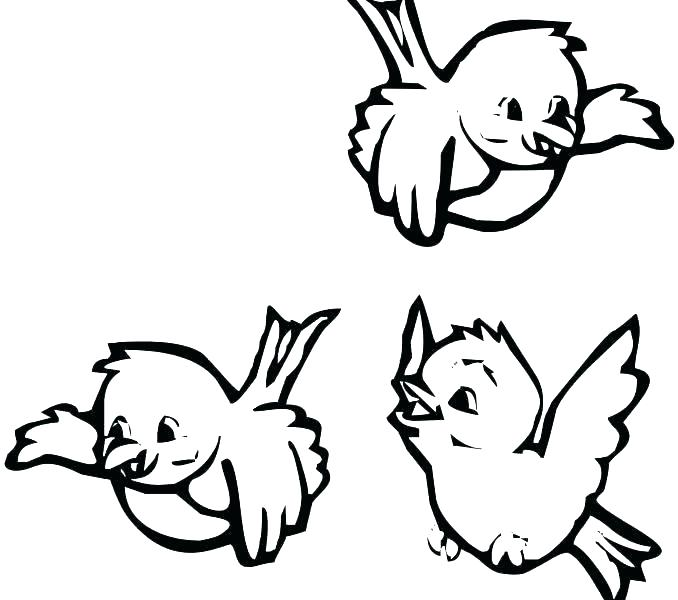 678x600 Birds Coloring Pages Adult Coloring Pages Bird Birdhouse Coloring