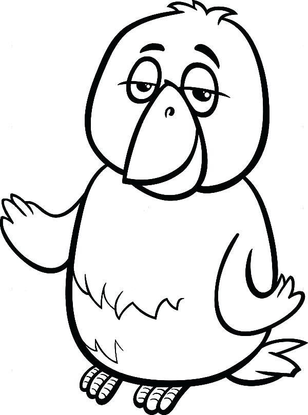 600x809 Coloring Page Of A Bird Canary Bird Cartoon Coloring Page