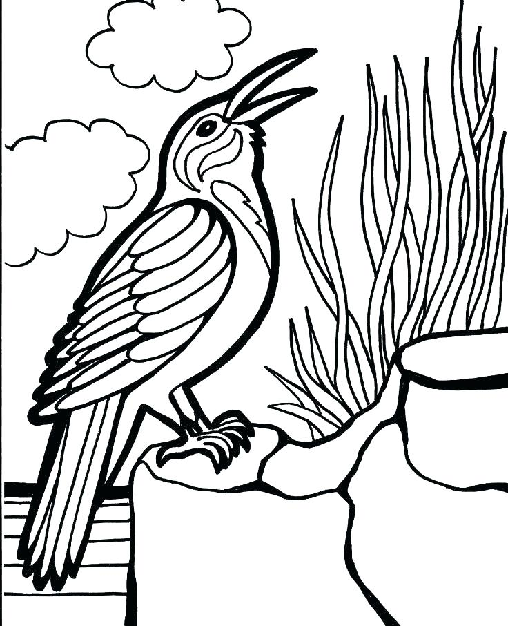736x906 Space Angry Birds Coloring Pages Angry Birds Space Coloring Pages