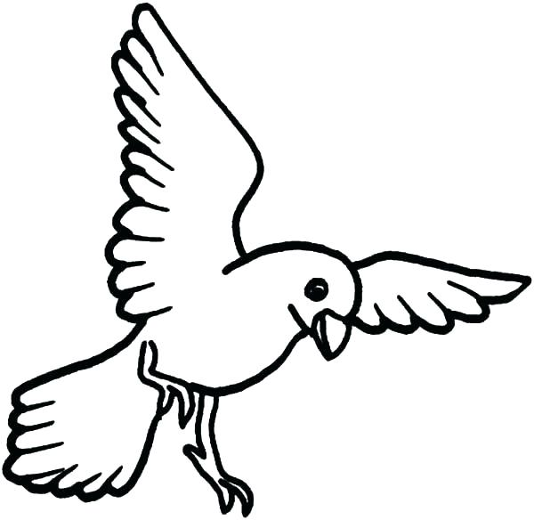 600x584 Coloring Pages Birds Coloring Book Beautiful How To Draw Bird