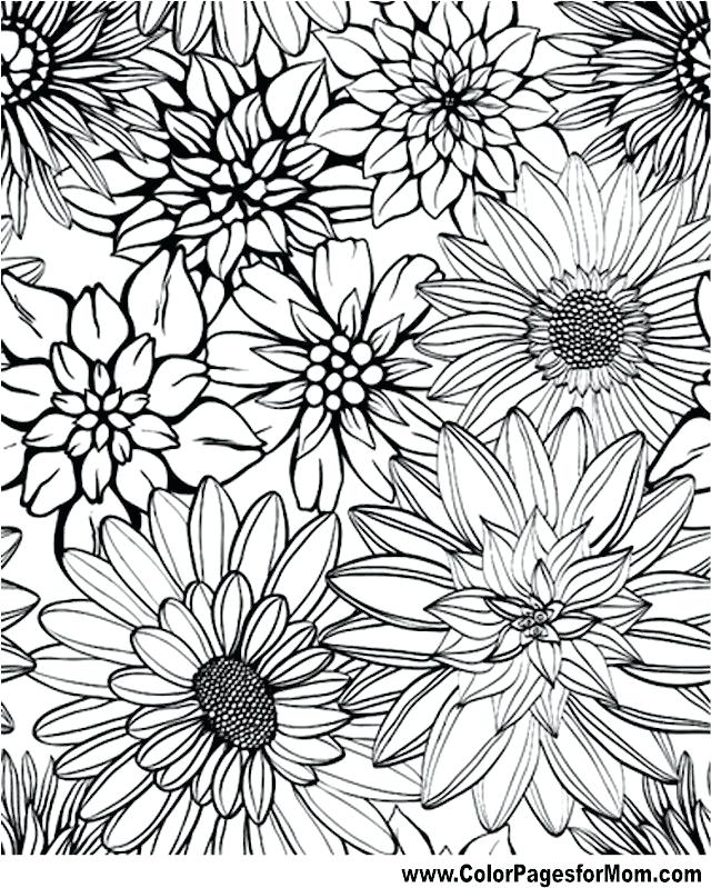 640x799 Flower Coloring Pages To Print Free Printable Coloring Pages