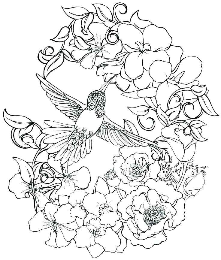 736x866 Realistic Flower Coloring Pages Realistic Flowers Coloring Pages