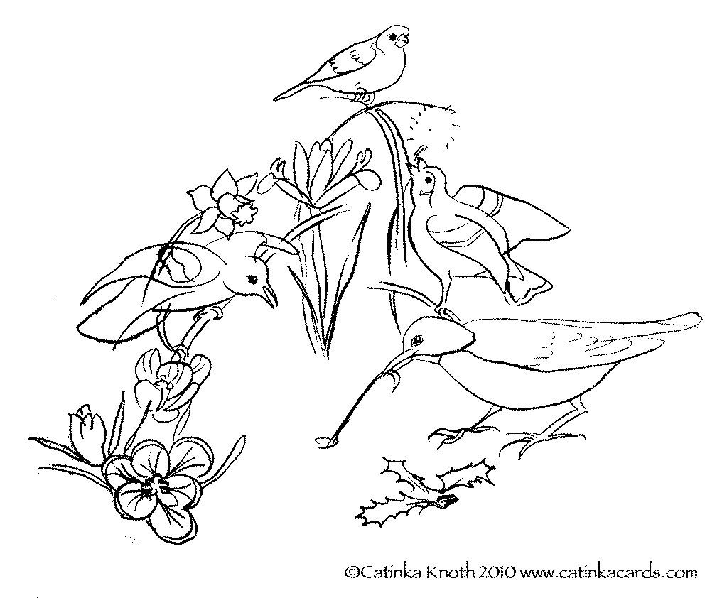 1023x842 Spring Birds Flowers Coloring Page Printable