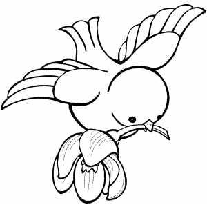 300x300 Bird Flying With Flower On Beak Coloring Sheet