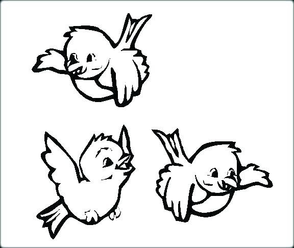 576x486 Coloring Pages Birds Baby Bird Coloring Page Baby Bird Coloring