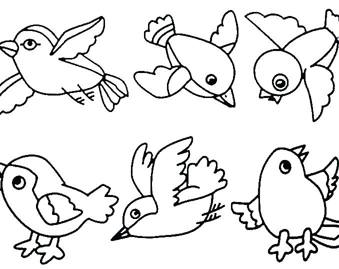 678x538 Coloring Pages Of Birds Or Free Coloring Pages Of Birds Trend Bird