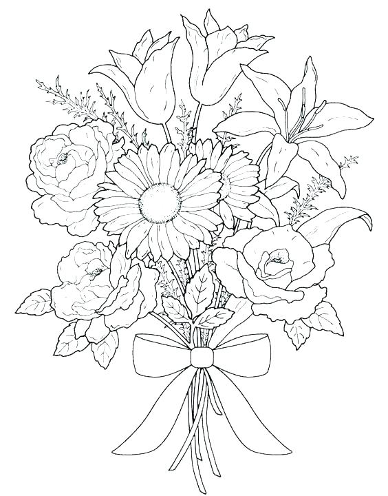 564x720 Free Coloring Pages For Spring Flowers