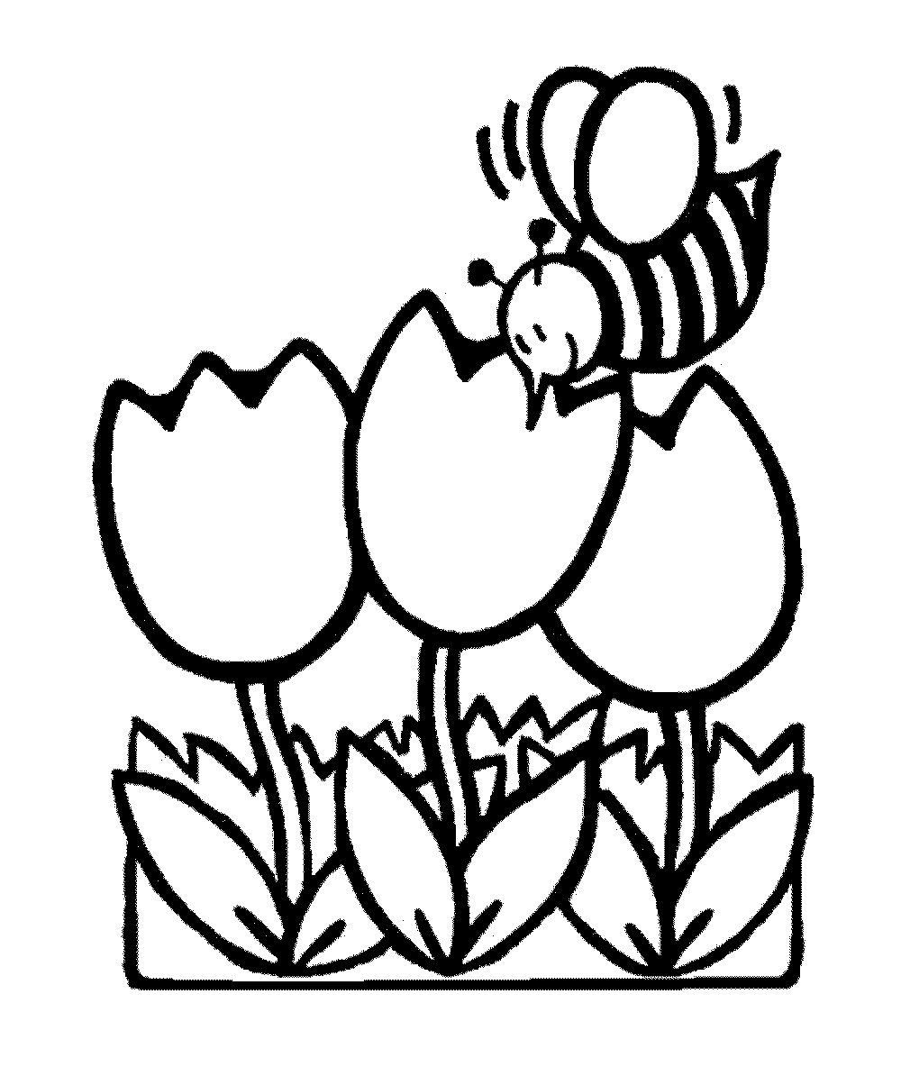 1000x1184 Printable Coloring Pages Flowers