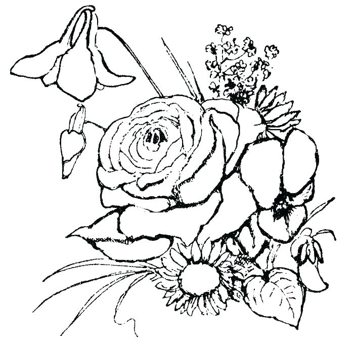 700x688 Printable Rose Flower Coloring Pages Vanda