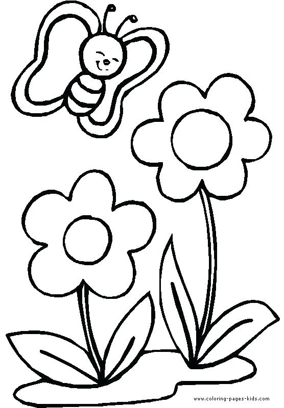 556x800 Small Flower Coloring Pages