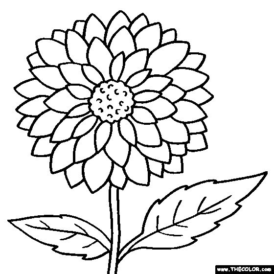 560x560 Black And White Coloring Pages Of Flowers
