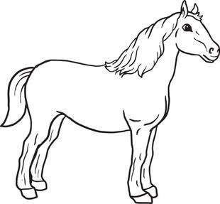 310x287 Free Horses Coloring Pages For Kids
