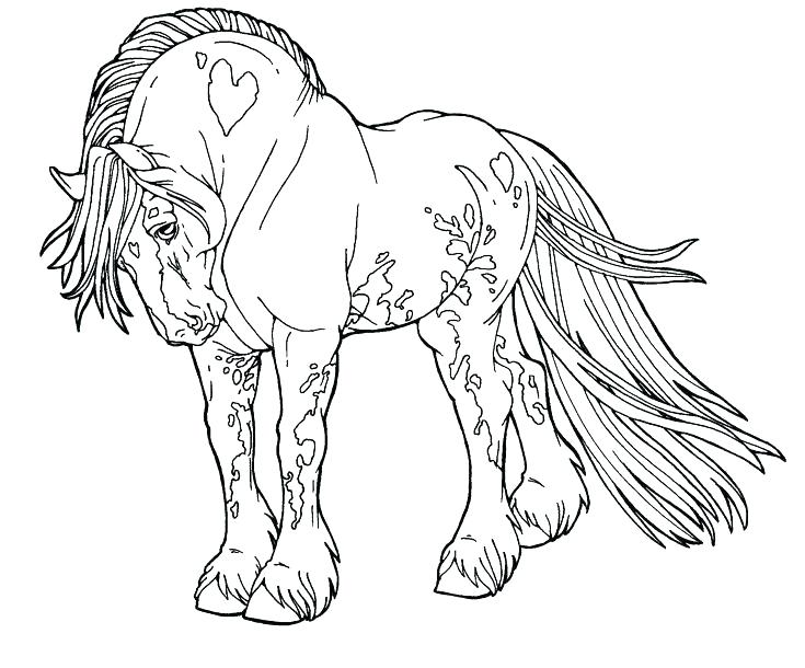 735x610 Horse Picture Coloring Pages Black And White Horse Pictures