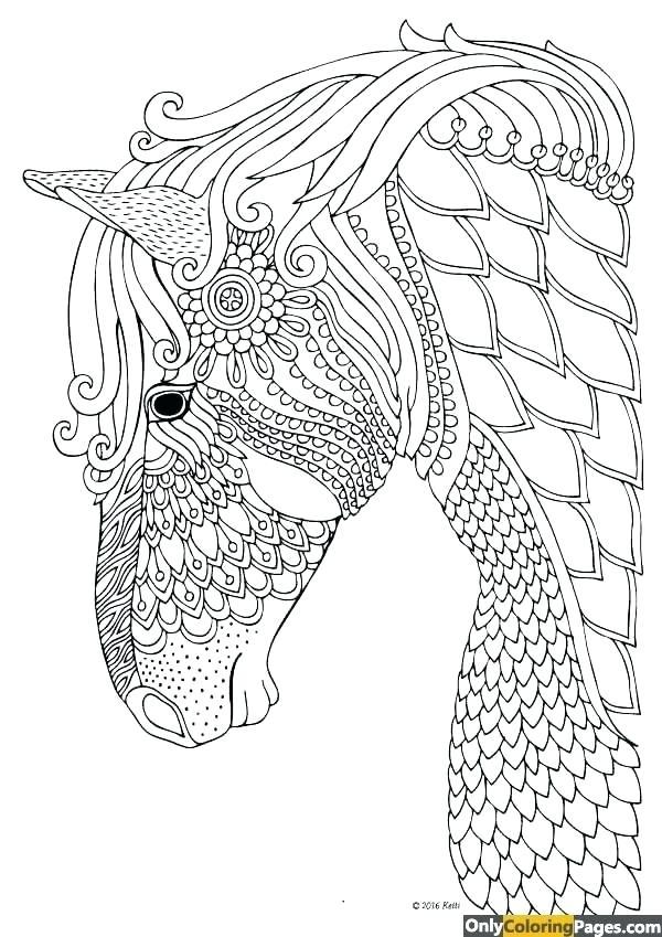 600x849 Num Nom Coloring Pages Coloring Pages Horse Mandala Coloring Pages