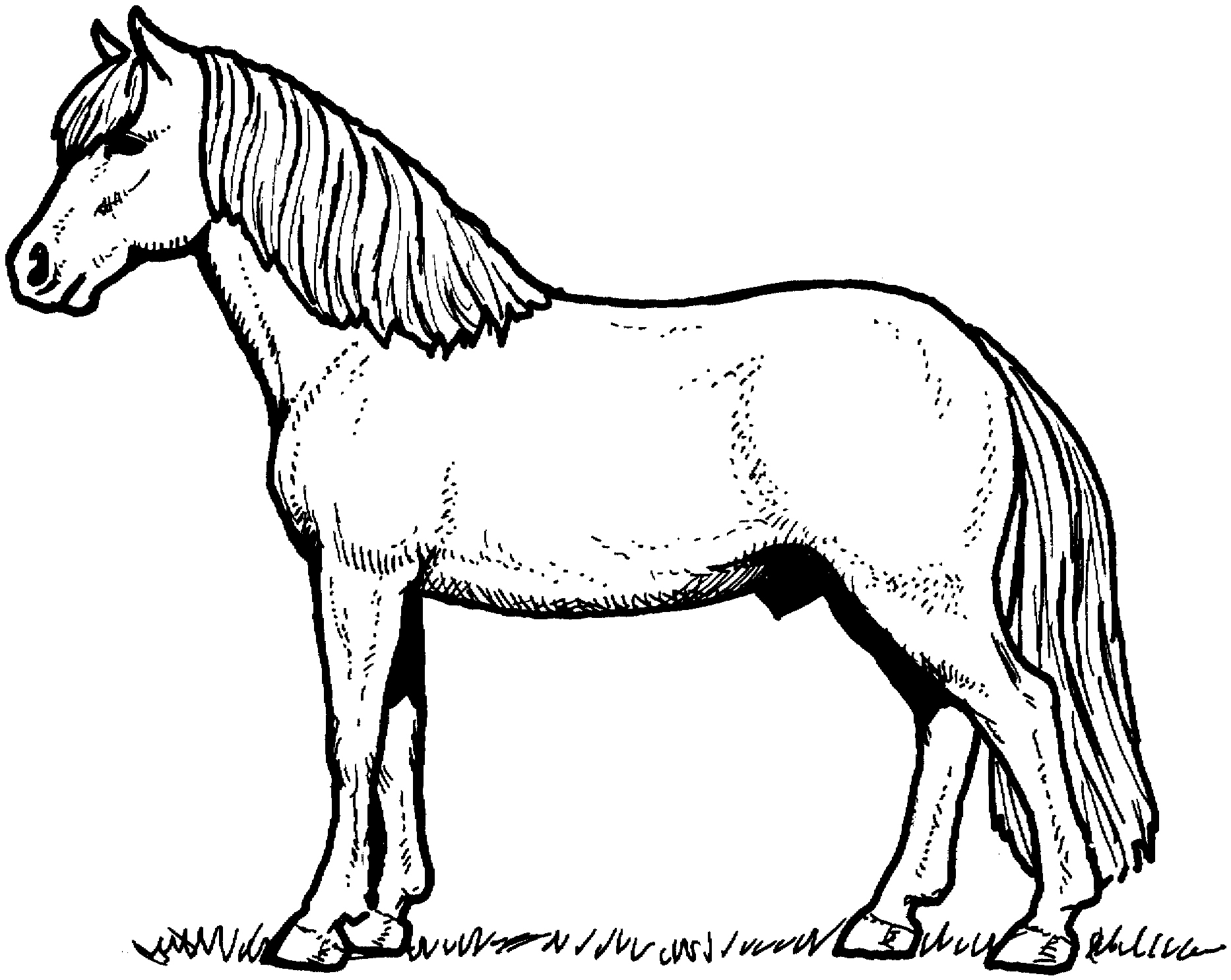 1866x1486 Pony Coloring Pages Luxury Realistic Printable Horse Coloring