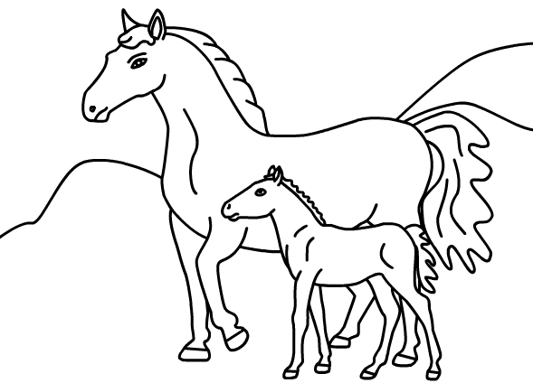 589x424 Printable Horse Coloring Pages