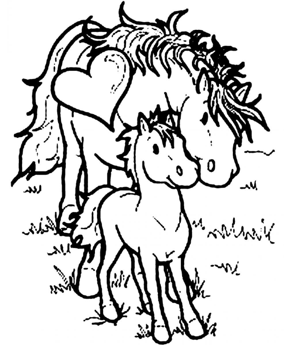 987x1200 Printable Horse Coloring Pages
