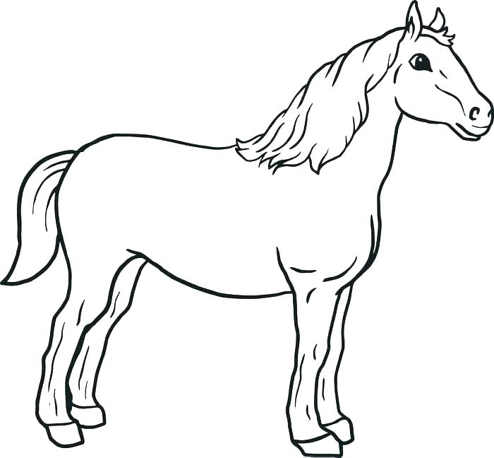 700x648 Coloring Page Horse