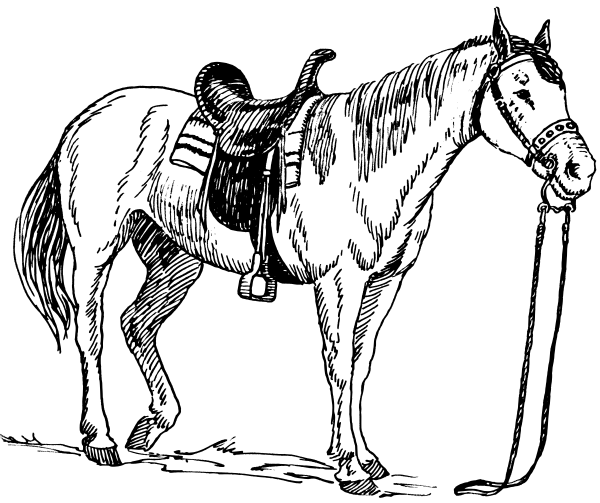 600x503 Free Medieval Horse Coloring Pages Printable