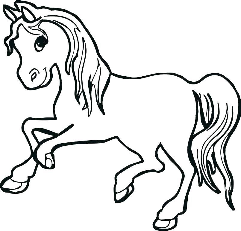 805x769 Horse Color Pages