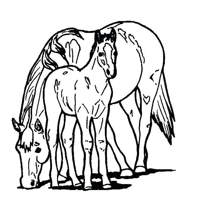 690x705 Black And White Horse Coloring Pages Free Book To Print Color