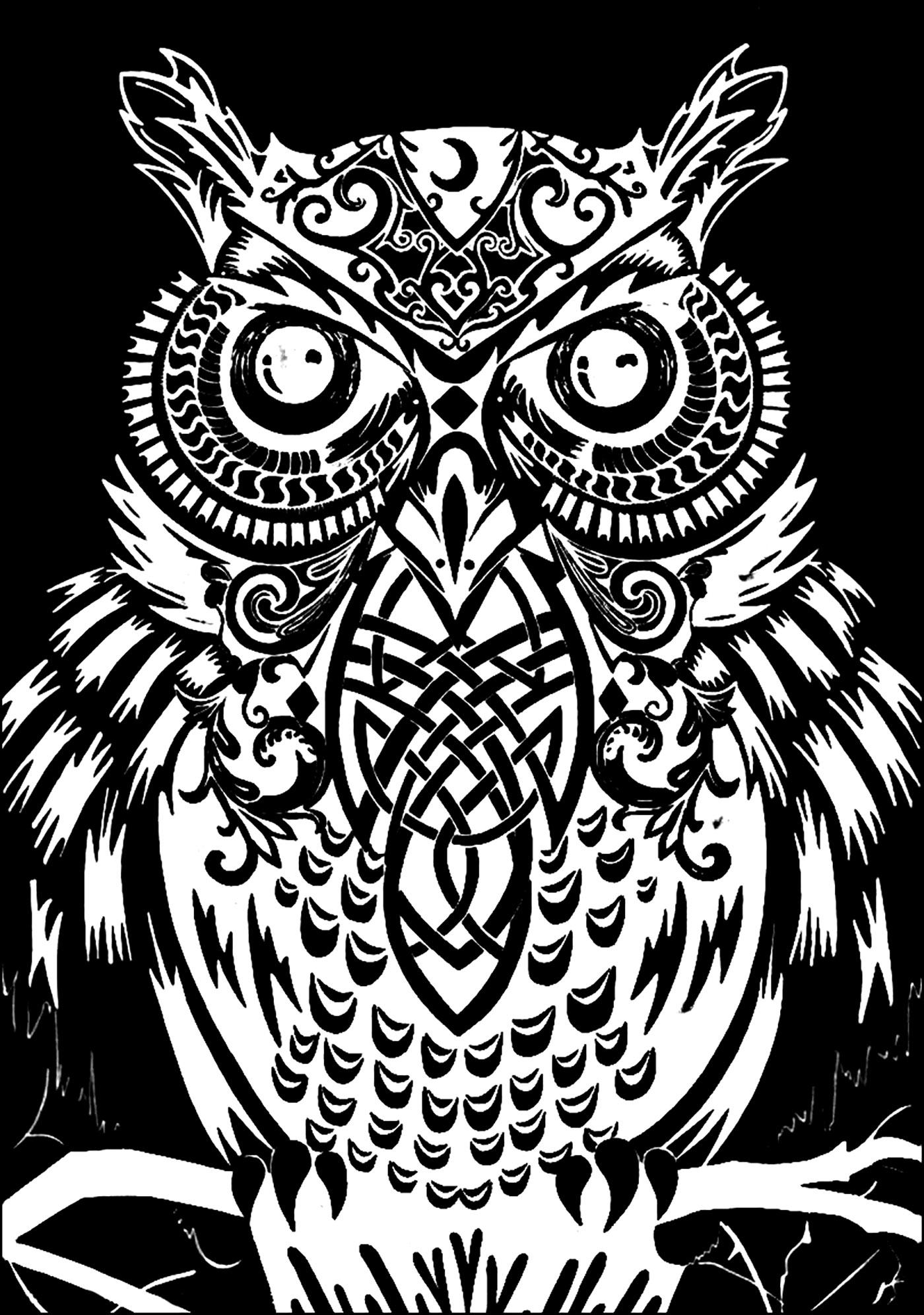 1400x1991 Owl Black Background