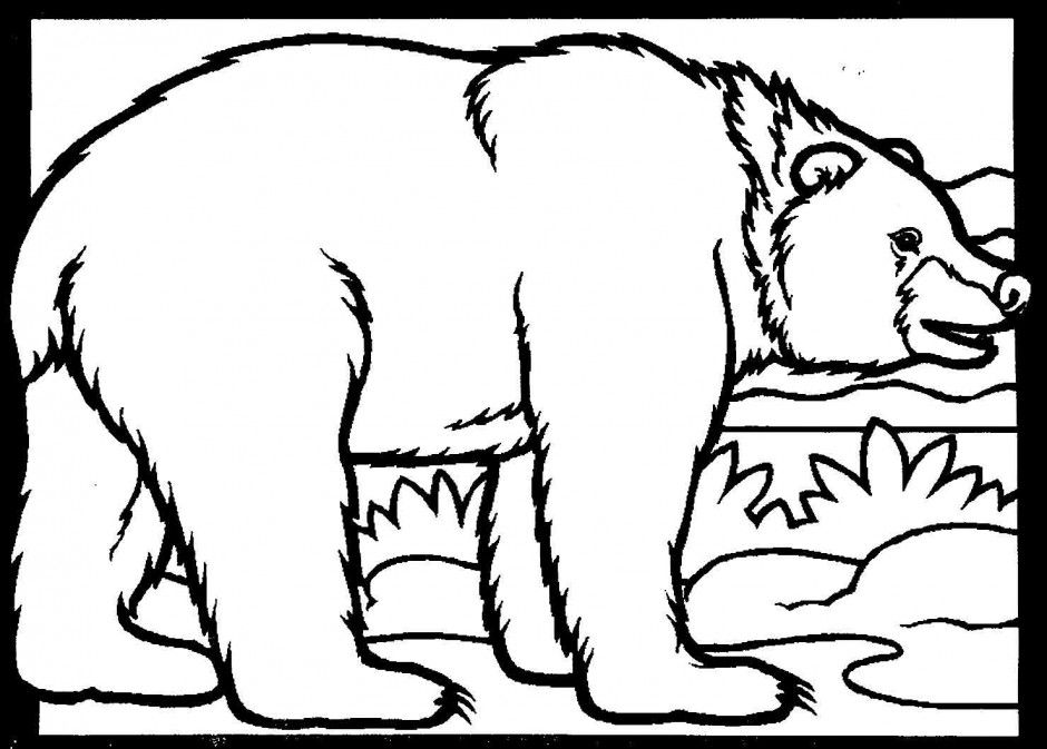940x673 Black Bear Coloring Page Clipart Best Bear Coloring Pages