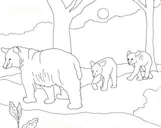 320x256 Black Bear Coloring Pages American Black Bear Coloring Pages