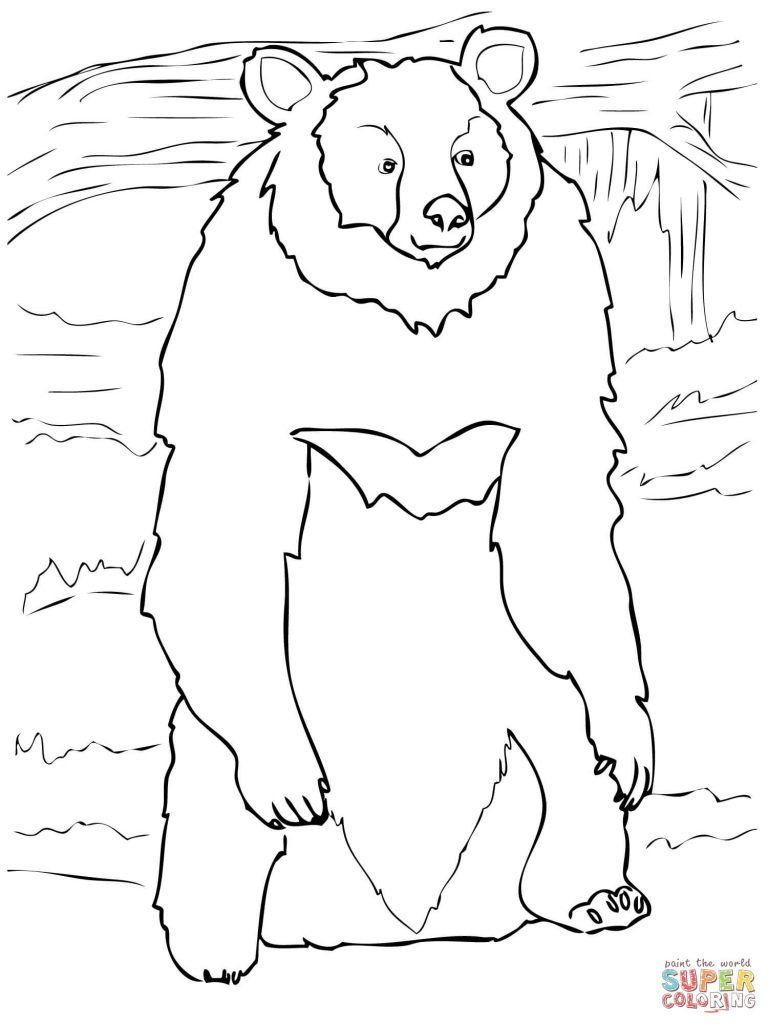 768x1024 Asia Black Bear Standing Up Free Coloring Page