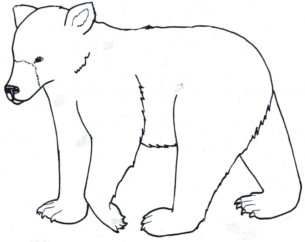 1024x813 Cute Baby Black Bear Coloring Pages Free Printable Animals
