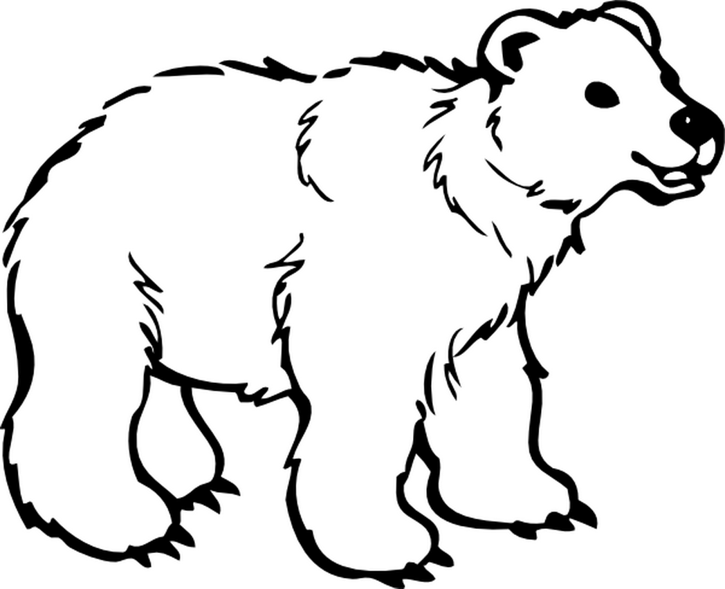 1048x852 Black Bear Coloring Pages Free Page Site Coloring Pages